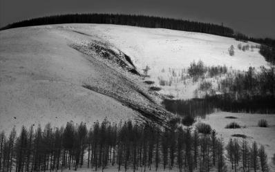 冬季童话特辑2:阿尔山的黑白风光